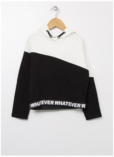 Funky Rocks Sweatshirt Renkli